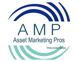 Asset Marketing Pros-Trinity Auction Gallery