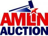 Amlin Auction