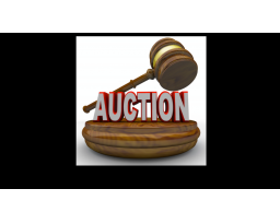 Anthony Auctions